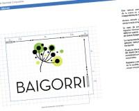 Floristeria Baigorri
