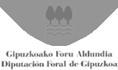 Diputacion Foral Gipuzkoa